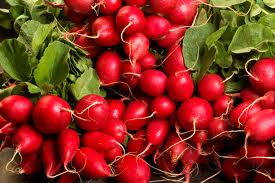 Recipes - Root For The Radish