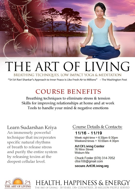 The Art Of Living: Breathing Techniques, Low Impact Yoga And Meditation