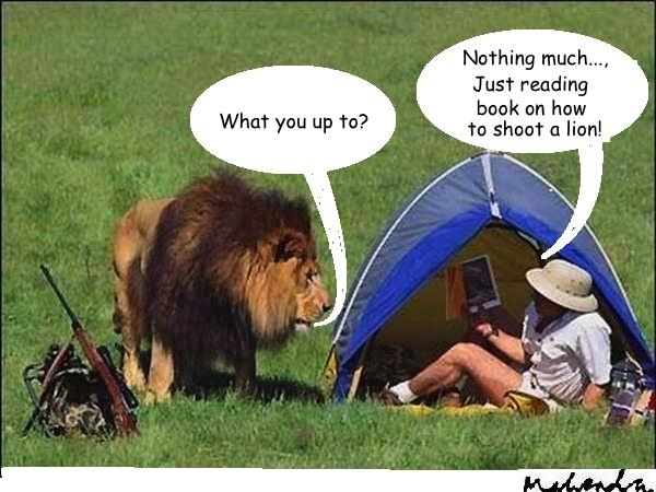 Cartoon: Lion And Hunter