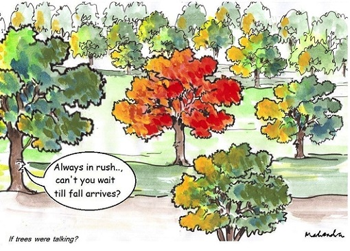 Cartoon: Fall Leaves