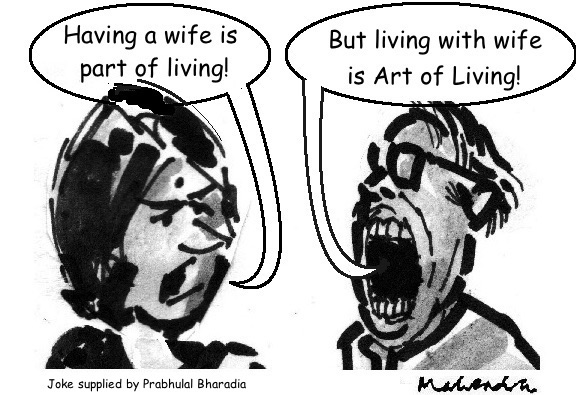 Cartoon: Having A Wife
