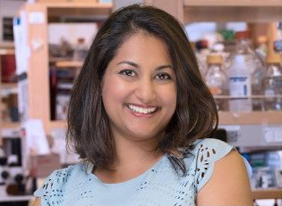 Shruti Naik Awarded L'Oréal USA Fellowship