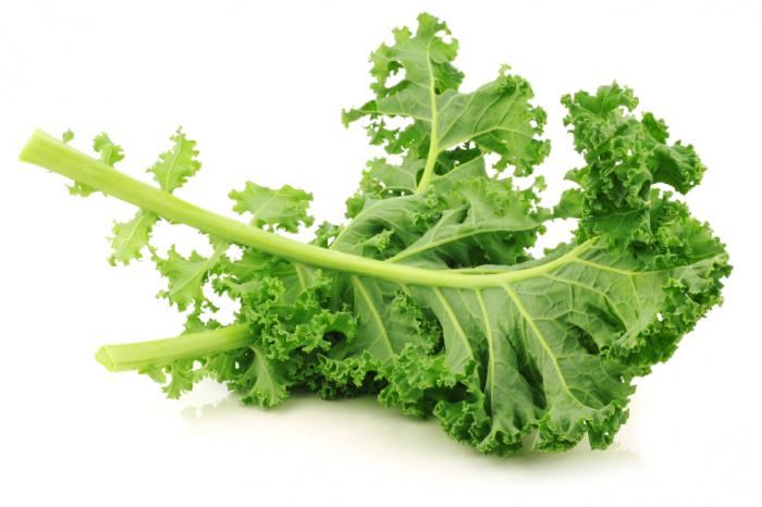 Recipes - Kale Is Cool