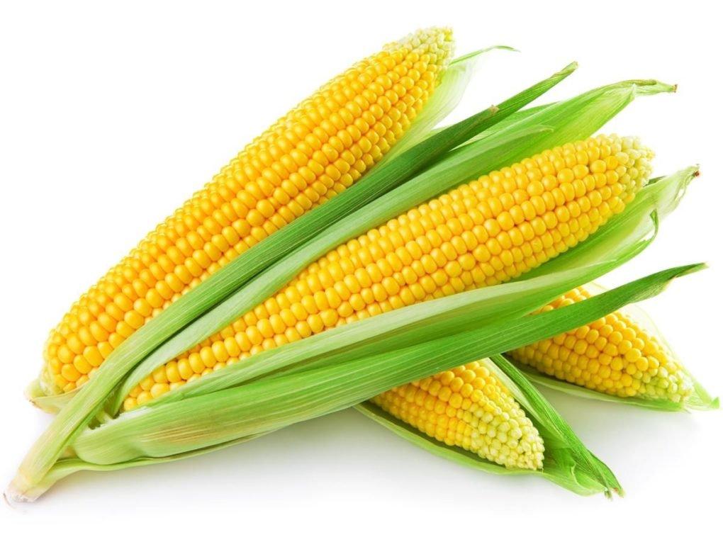 Recipes - Corn