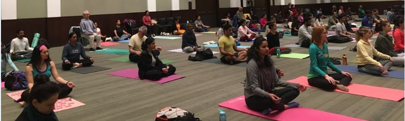 Yoga Immersion Boston