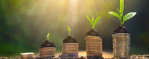 Five Tax-Loss Harvesting Tips